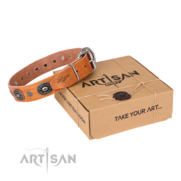 Quality full grain natural leather dog collar made for daily walking