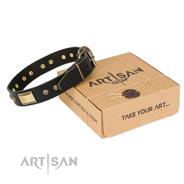 Incredible full grain leather collar for your impressive dog