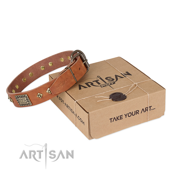 Fashionable full grain leather collar for your impressive doggie