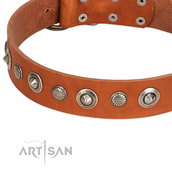 Stylish design embellished dog collar of top quality genuine leather