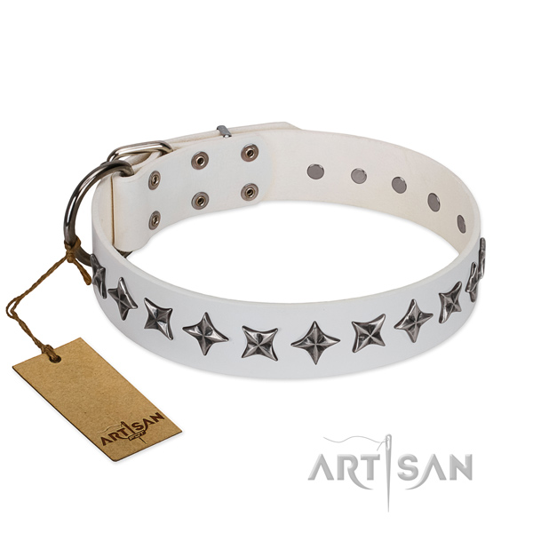 Basic training dog collar of top quality full grain genuine leather with embellishments