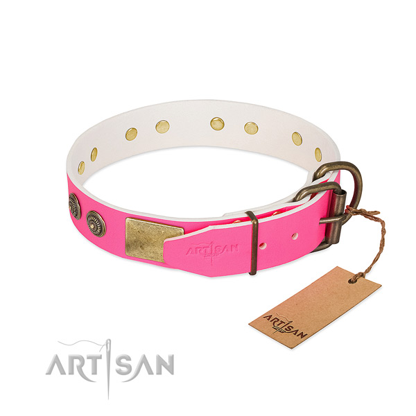 Corrosion resistant traditional buckle on genuine leather collar for everyday walking your dog
