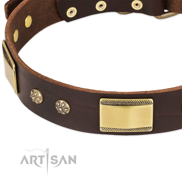 Rust-proof decorations on full grain genuine leather dog collar for your dog