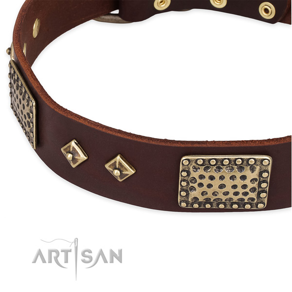 Durable D-ring on full grain natural leather dog collar for your four-legged friend