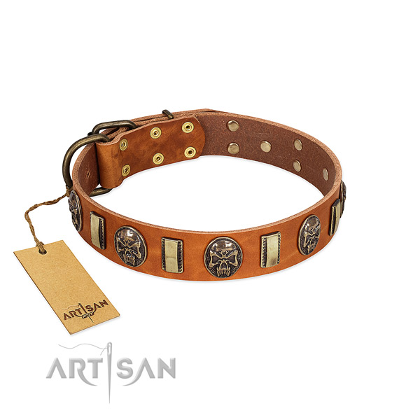 Comfortable leather dog collar for comfy wearing