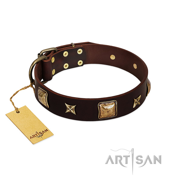 Remarkable leather collar for your pet