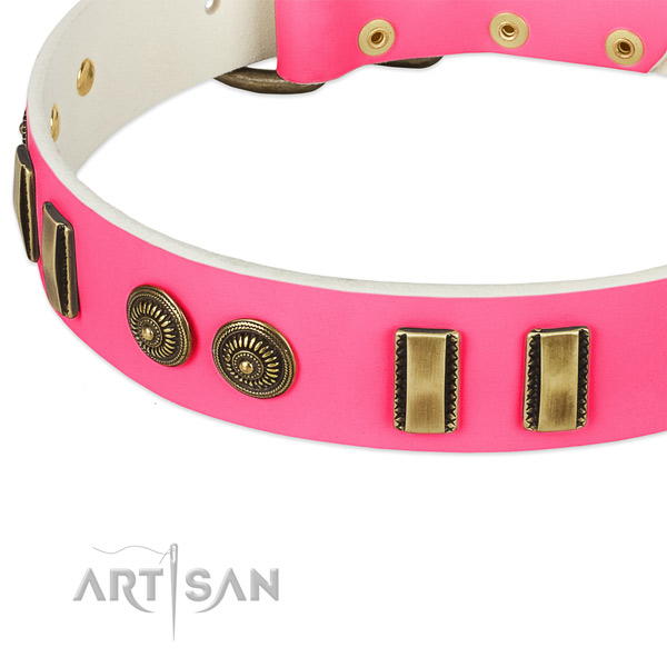 Corrosion resistant embellishments on genuine leather dog collar for your dog