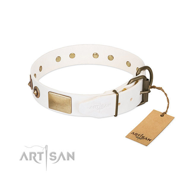 Rust-proof studs on full grain leather dog collar for your canine