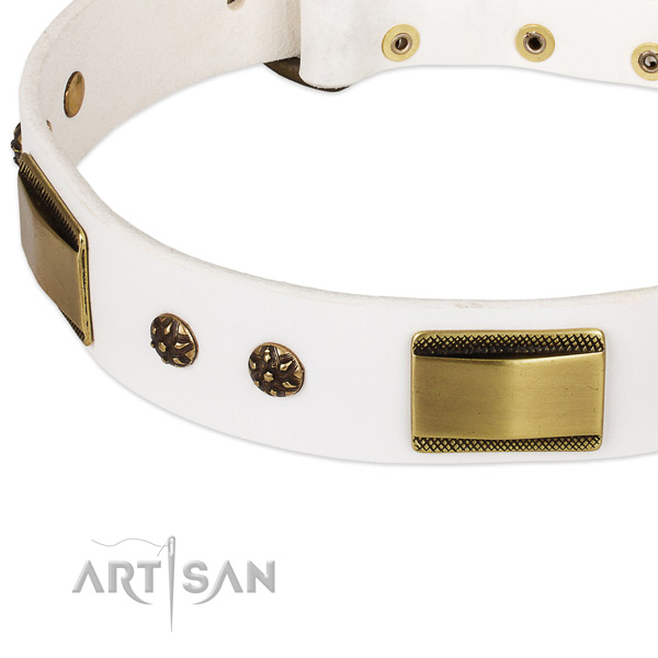 Reliable embellishments on leather dog collar for your canine