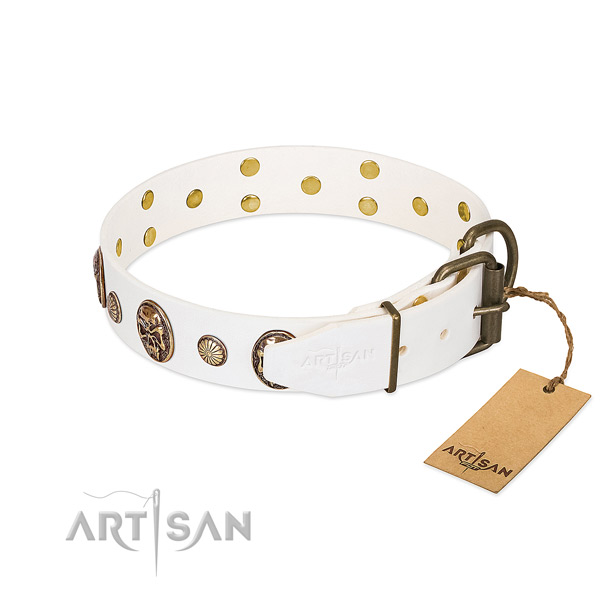Durable buckle on genuine leather collar for fancy walking your four-legged friend