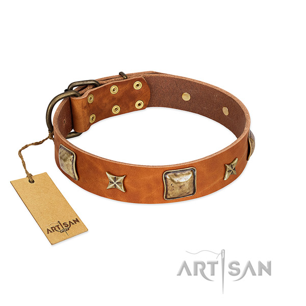 Incredible full grain natural leather collar for your dog