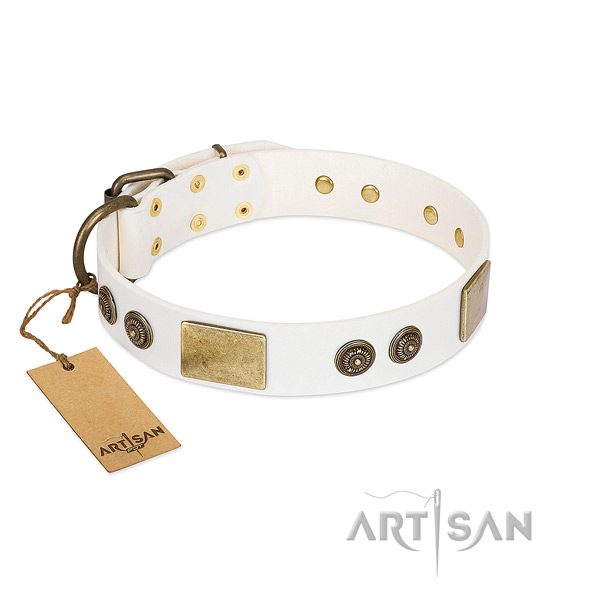 Decorated full grain leather dog collar for everyday use