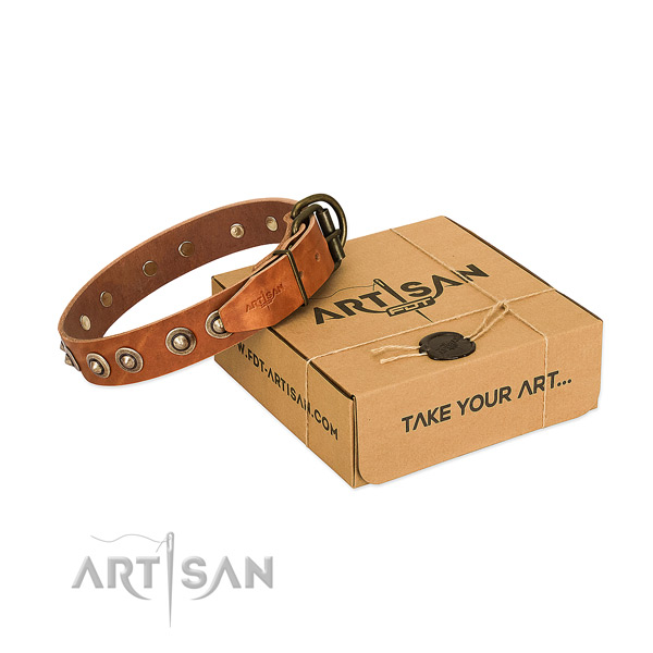 Corrosion proof fittings on genuine leather dog collar for your pet