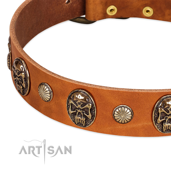 Reliable hardware on natural genuine leather dog collar for your dog