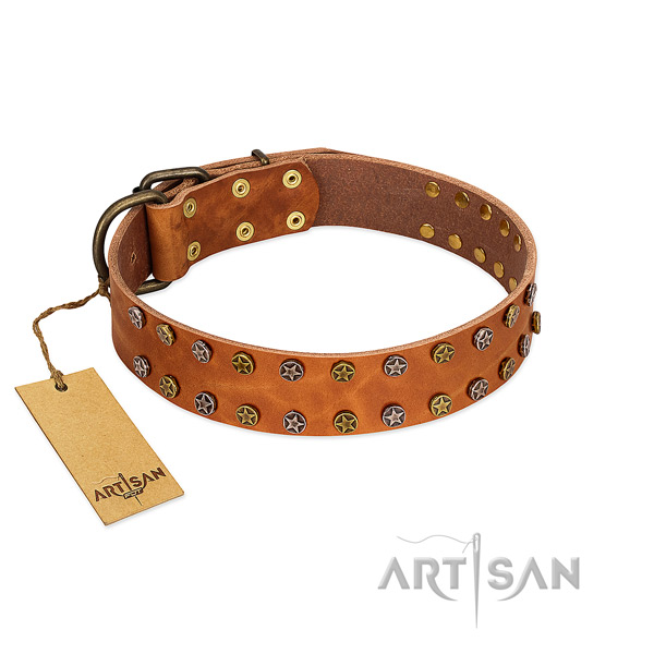 Daily walking quality natural leather dog collar with adornments