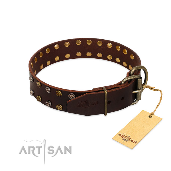 Walking full grain leather dog collar with exceptional decorations