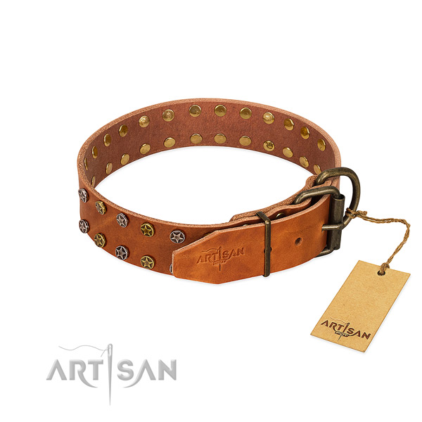 Comfy wearing genuine leather dog collar with amazing studs