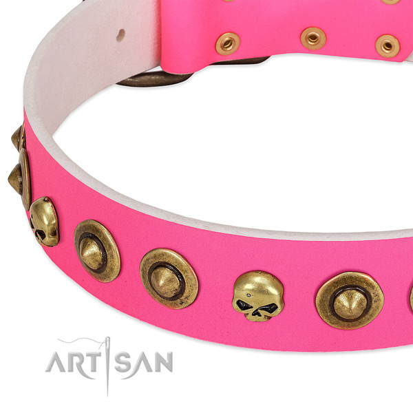 Amazing studs on full grain leather collar for your dog