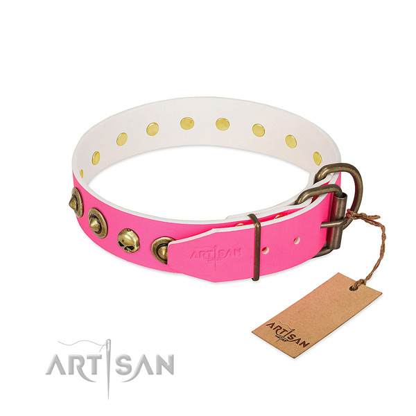 Full grain natural leather collar with unique adornments for your four-legged friend