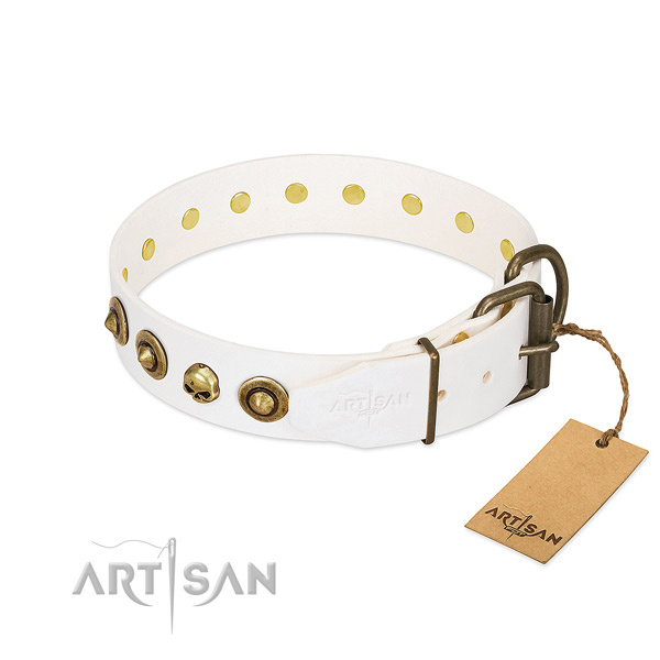 Natural leather collar with amazing adornments for your four-legged friend