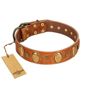 """Glossy Autumn"" Designer Handmade FDT Artisan Tan Leather Bullmastiff Collar with Ovals and Studs"
