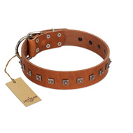 """Guard of Honour "" Designer FDT Artisan Tan Leather Bullmastiff Collar with Small Dotted Pyramids"