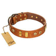 """Egyptian Script"" FDT Artisan Tan Leather Bullmastiff Collar with Plates and Small Studs"