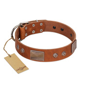 """Great Obelisk"" Handcrafted FDT Artisan Tan Leather Bullmastiff Collar with Large Plates and Pyramids"