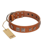 """Antique Figures"" FDT Artisan Tan Leather Bullmastiff Collar with Silver-like Engraved Plates"