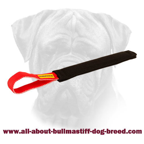 Tug Bite Bullmastiff French Linen Puppy