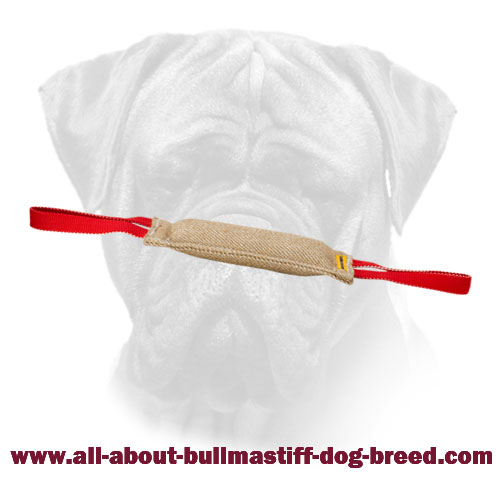 Bite Tug Jute Bullmastiff Long