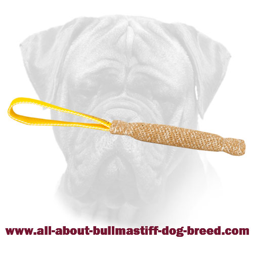 Bite Bullmastiff Jute Tug for Puppy with Handle