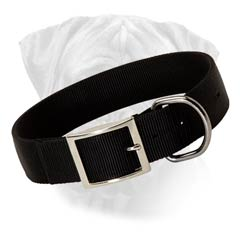 Bullmastiff No Pressing Effect Nylon Collar