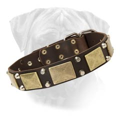 Wonderful Bullmastiff Collar for Walking