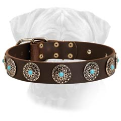 Gorgeous Walking Leather Collar