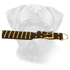 Leather Bullmastiff Collar for Playing