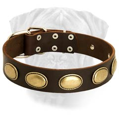 Extra Wide and Durable Leather Dog Collar