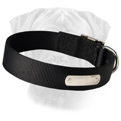 Nylon Collar for Daily Safe Walking