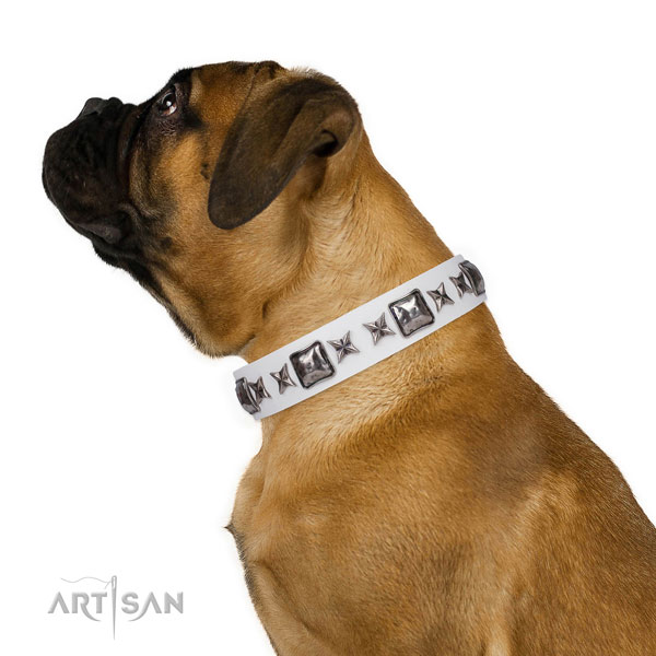 Stylish design adorned genuine leather dog collar for daily walking