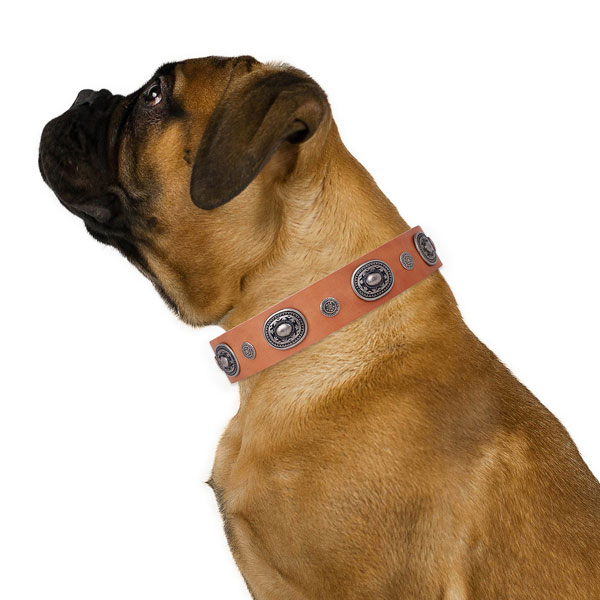 Natural leather dog collar with rust resistant buckle and D-ring for stylish walking