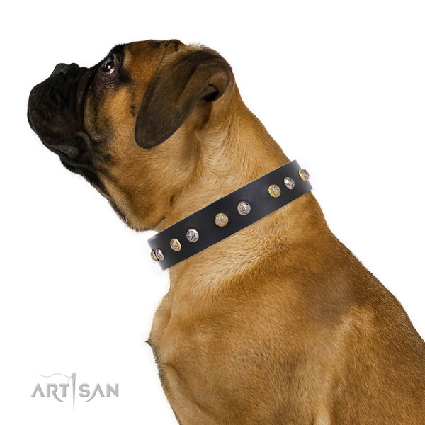 Leather dog collar with strong buckle and D-ring for comfy wearing