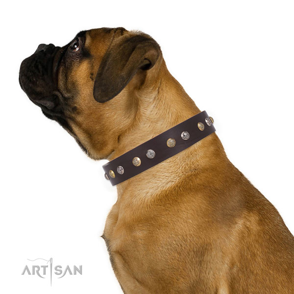 Natural leather dog collar with rust-proof buckle and D-ring for walking