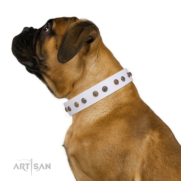 Walking decorated dog collar made of strong leather