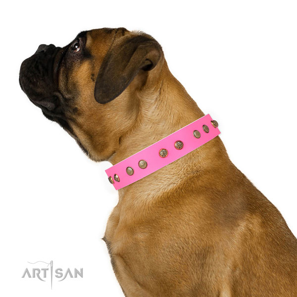 Fashionable decorations on daily walking full grain genuine leather dog collar