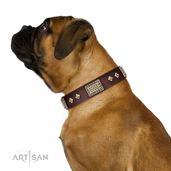 Best quality stylish walking dog collar of natural leather