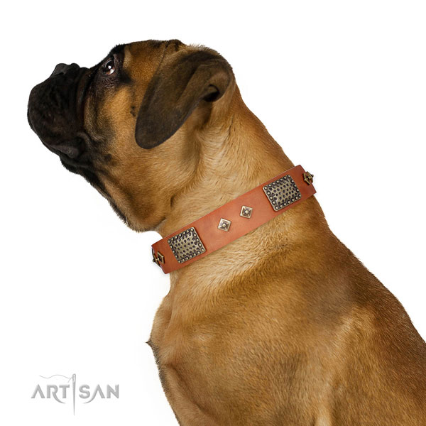 Basic training dog collar of natural leather with designer decorations