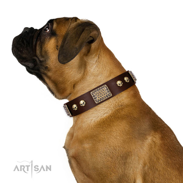 Corrosion resistant hardware on full grain leather dog collar for daily walking