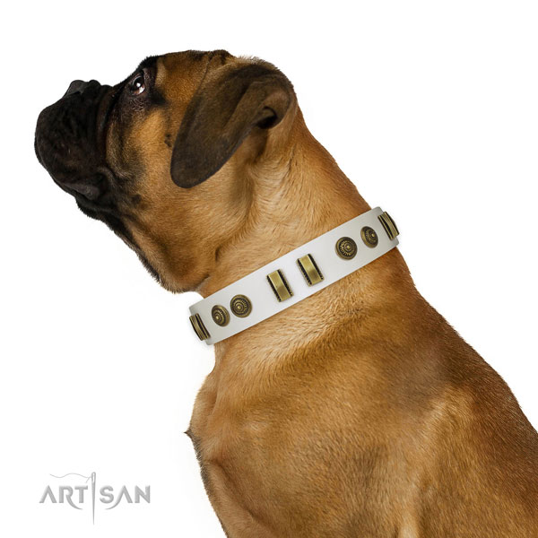 Rust-proof fittings on natural leather dog collar for stylish walking
