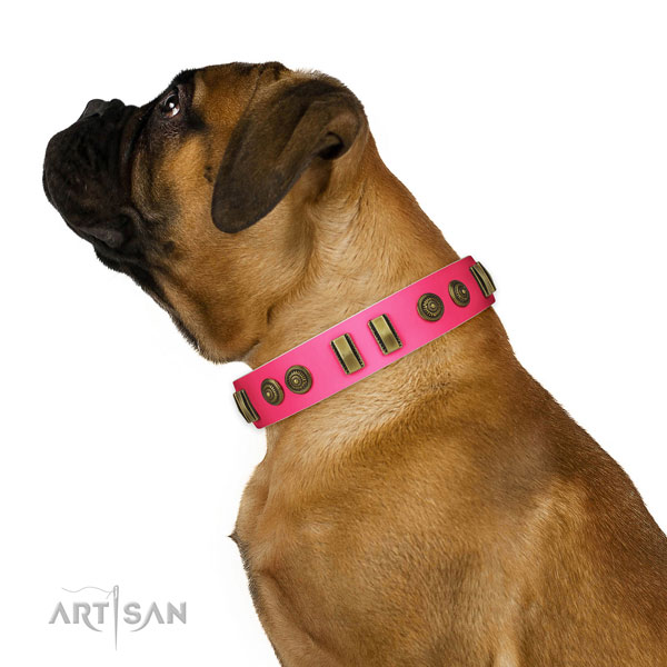 Comfortable wearing dog collar of natural leather with extraordinary adornments