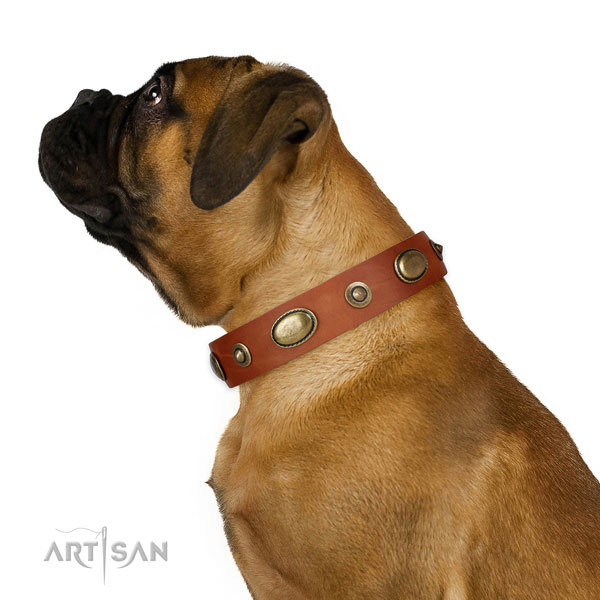 Easy wearing dog collar of leather with top notch embellishments